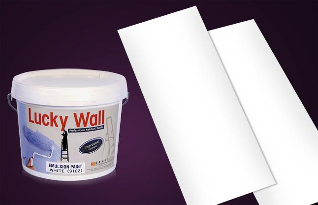 Brochure & Packaging Design